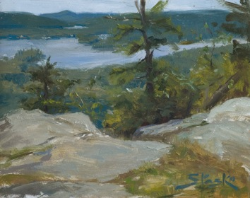 Bald Mountain Overlook, oil on panel, 8x10