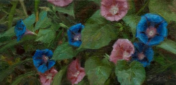 Morning Glories, oil on linen, 6x12, Artist's Collection